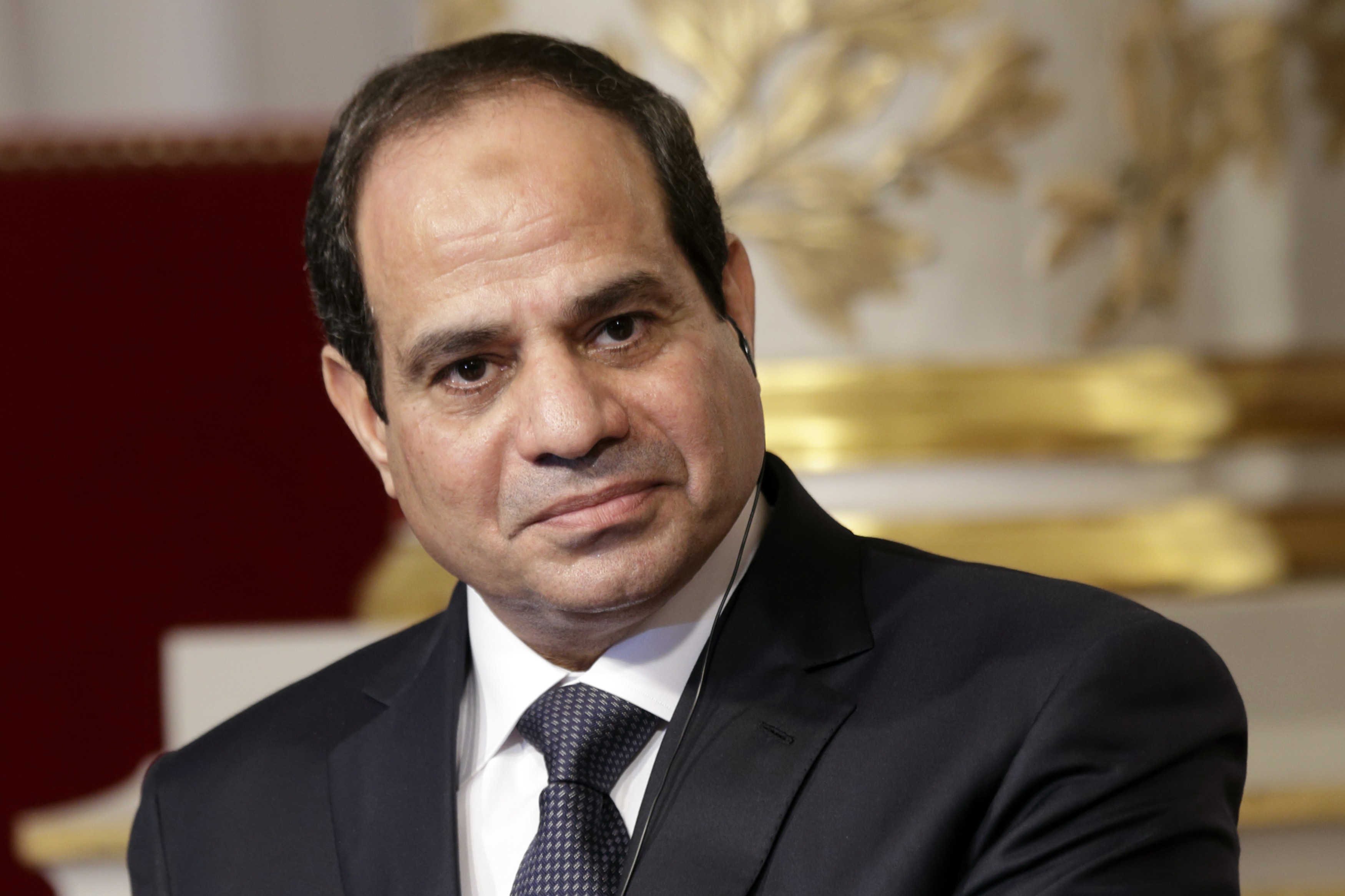 Egyptian President Abdel Fattah al-Sisi delivers a statement following a meeting with French President Francois Hollande at the Elysee Palace in Paris, November 26, 2014. REUTERS/Philippe Wojazer (FRANCE - Tags: POLITICS HEADSHOT) - RTR4FORT